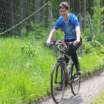 Kolospojka v lese